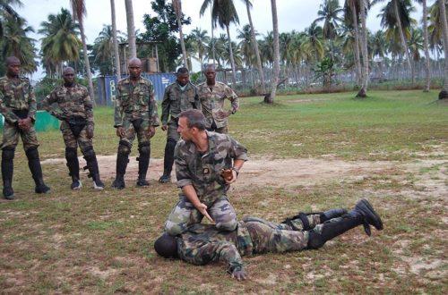 Article : La France envoie 235 militaires ivoiriens au Mali…